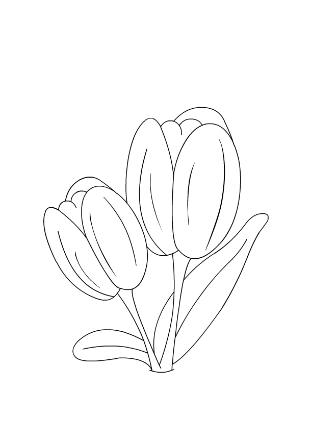 Flowers Coloring Pages For Kids Color A Tulip