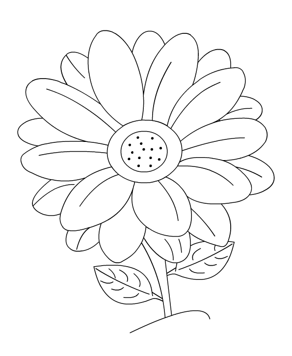 Color Daisies: Flower Coloring Coloring Pages Free For Kids