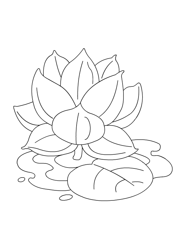 color lotus - Lotus Flower Coloring Page