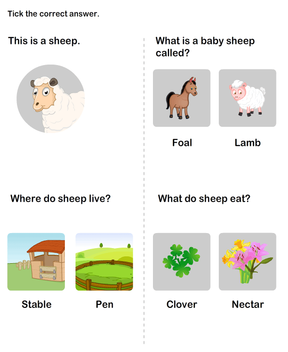 Match farm animals words to their babies | Kindergarten Worksheets